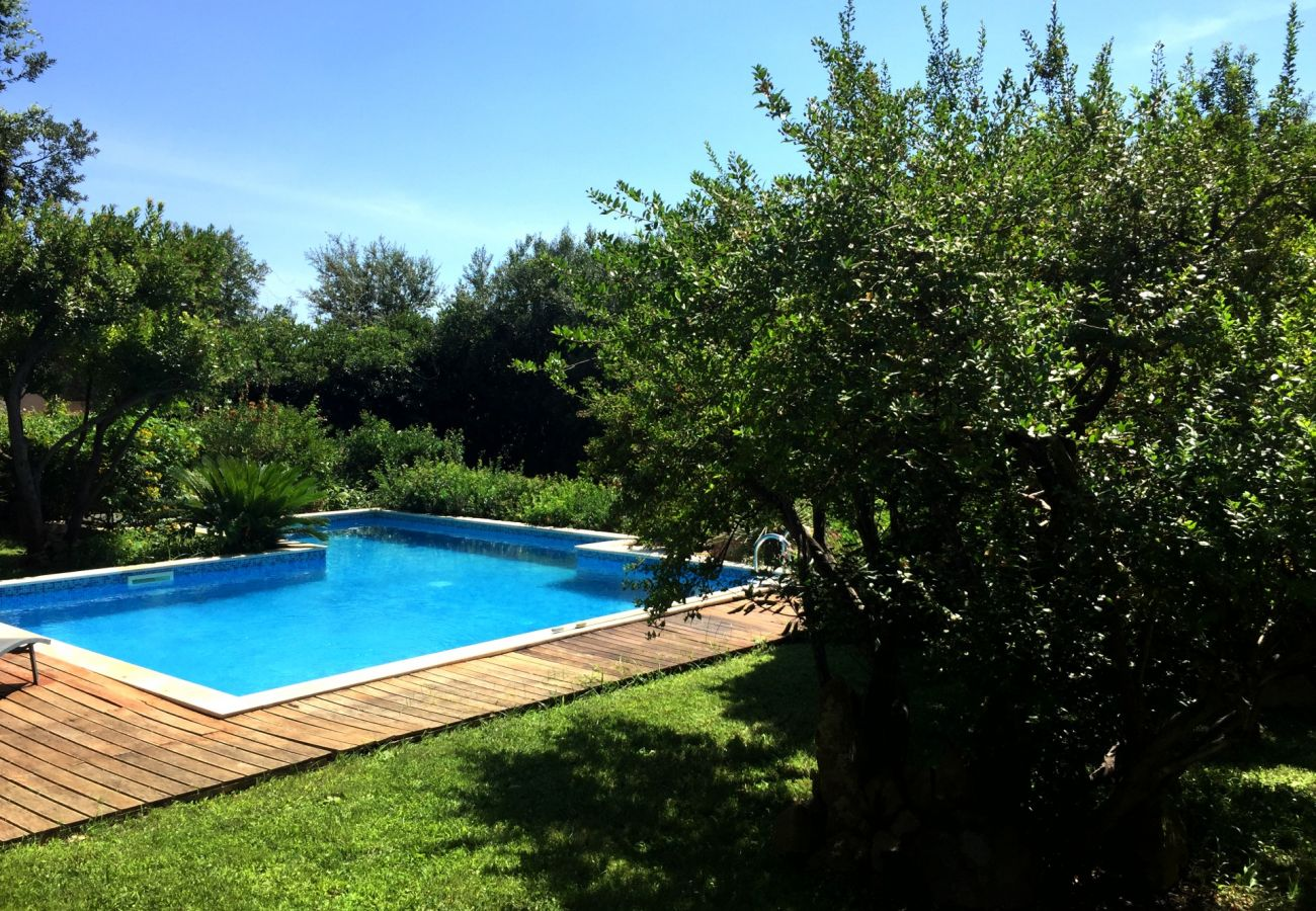 Villa a Maracalagonis - Holiday rental in Torre delle Stelle, Sardinia